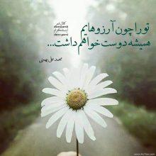 عکس نوشته تو را چون آرزوهایم همیشه دوست خواهم داشت