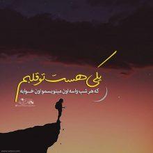 عکس نوشته غمگین یکی هست تو قلبم که هر شب… از مرتضی پاشایی