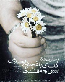 عکس نوشته غمگین خیلی دلم تنگه گلای باغچه رو چیدم من ببین چه قشنگه