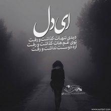 عکس نوشته غمگین ای دل دیدی تنهات گذاشت و رفت