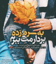 عکس نوشته عاشقانه پاییزی به سرم زده بردارمت ببرم