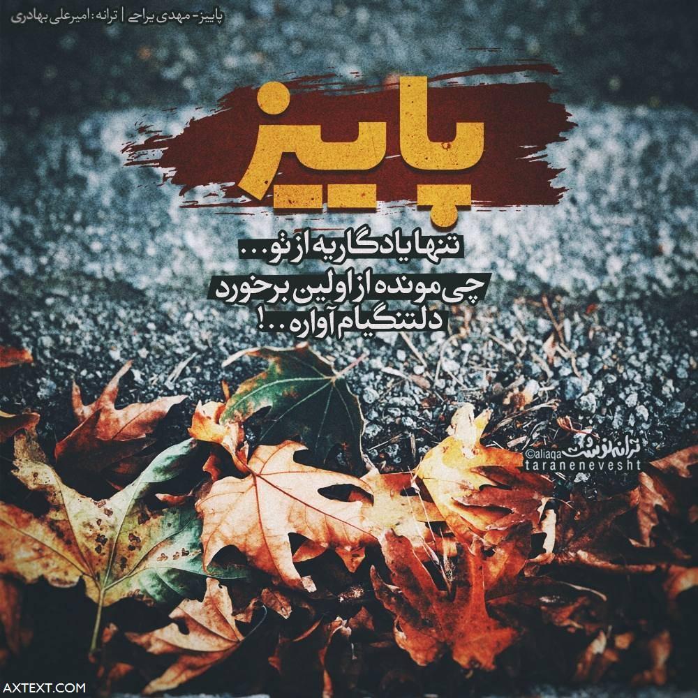 پاییز تنها یادگاریه از تو