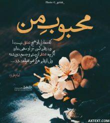 عکس نوشته محبوب من که معادل او هیچ عشقی نیست از امام علی (ع)
