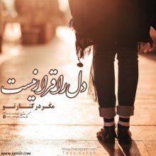 عکس نوشته دل را قرار نیست مگر در کنار تو از حسین منزوی